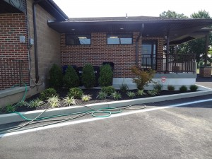 bucks county office landscape design