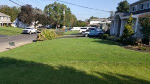 bucks county pa lawn installation