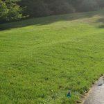 grass installation bucks county