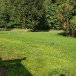 lawn installation bucks county