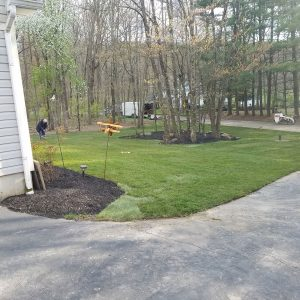 new hope pa grass replacement