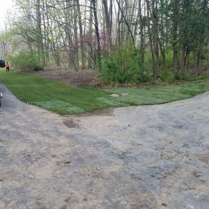new hope pa lawn replacement