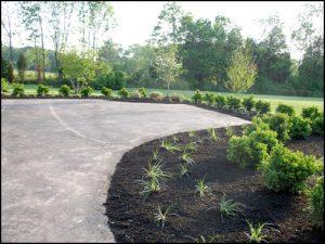 low maintenance design landscaping