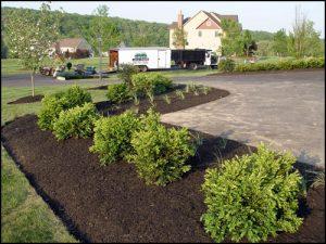 Philadelphia Foundation Planting Design