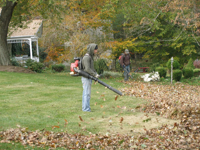 services-fall-clean-up-bucks-county