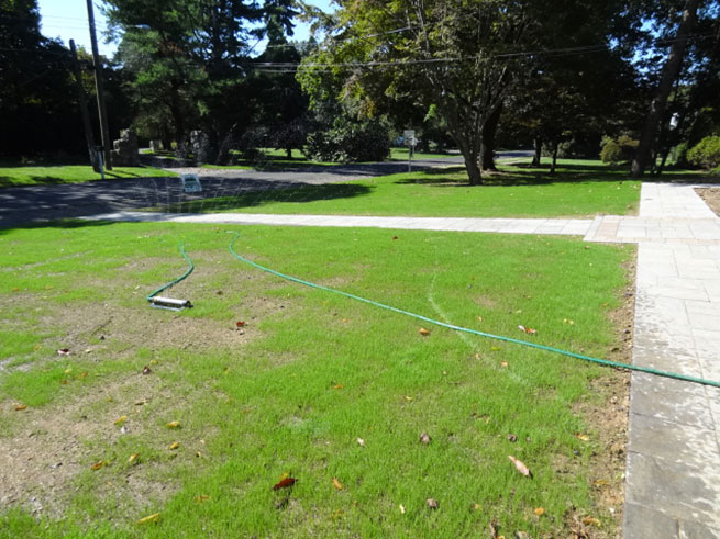 services-turf-renovation-bucks-county